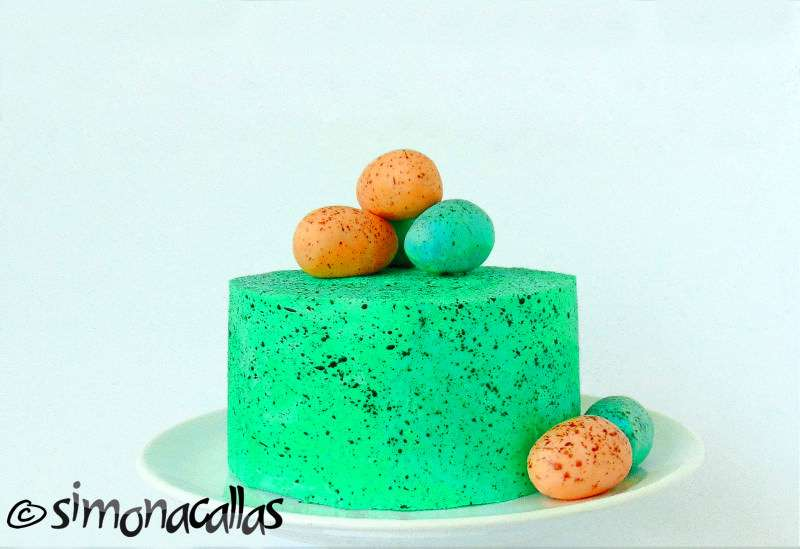 Tort-ciocolata-fructe-padure-2
