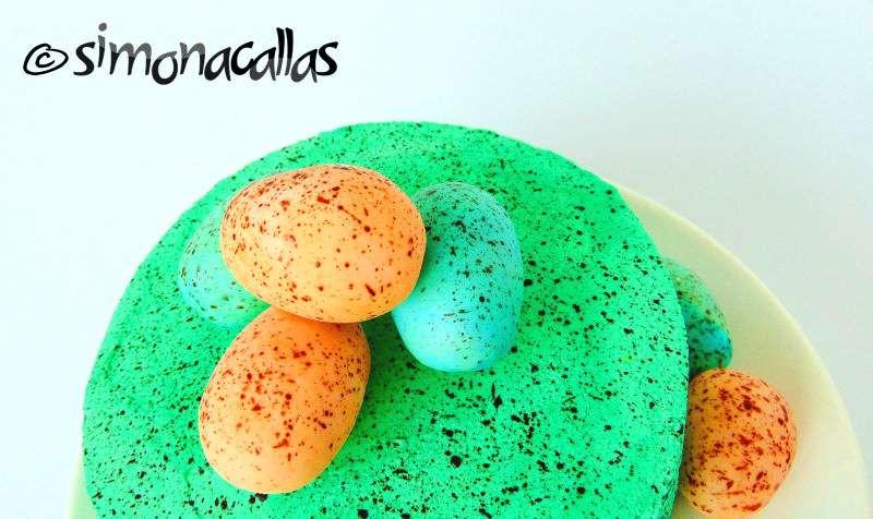 Tort-ciocolata-fructe-padure-3