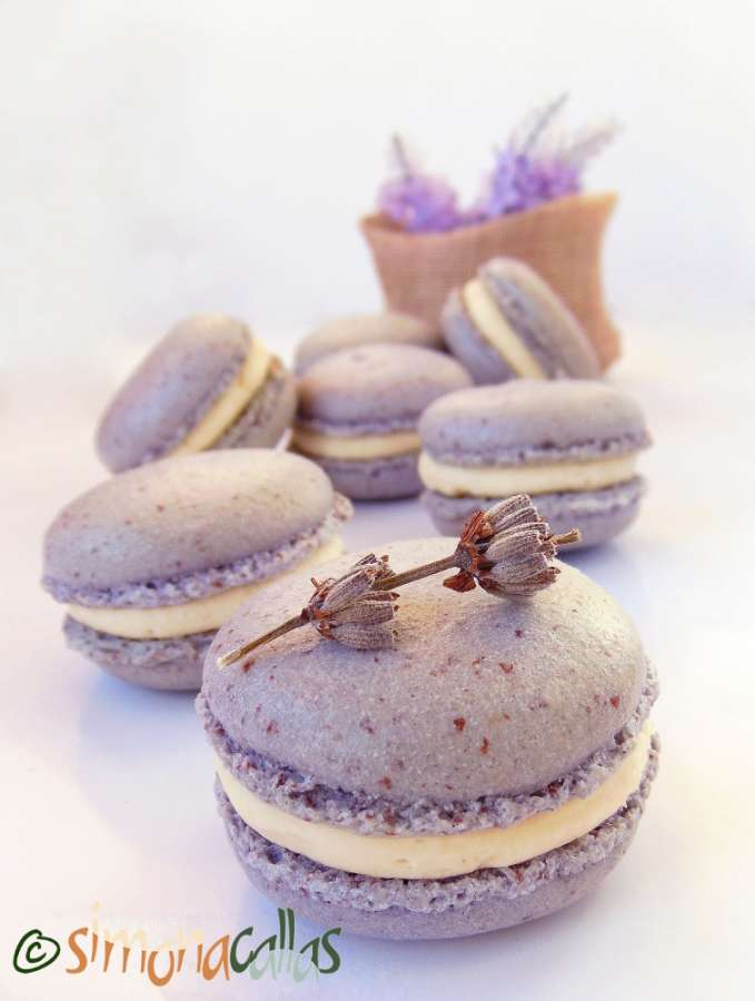 Lavender Macarons White Chocolate filling