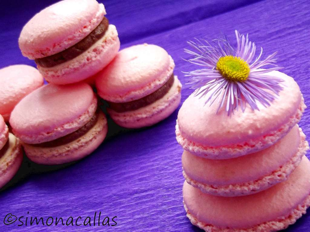 Macarons-2-simonacallas.com