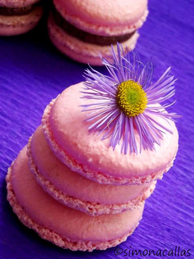 Macarons-5-simonacallas-com