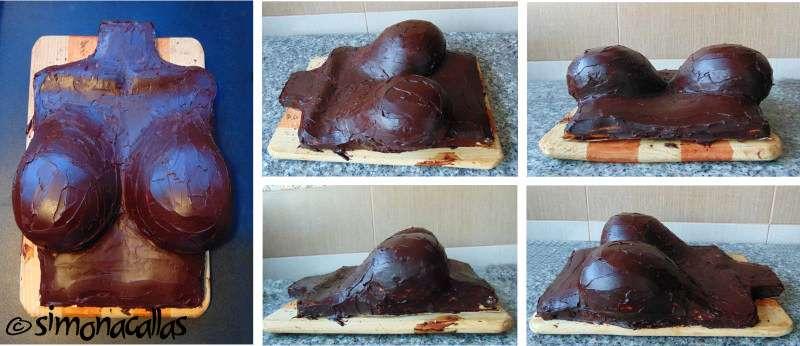 Tort-sexy-sani-bust-b