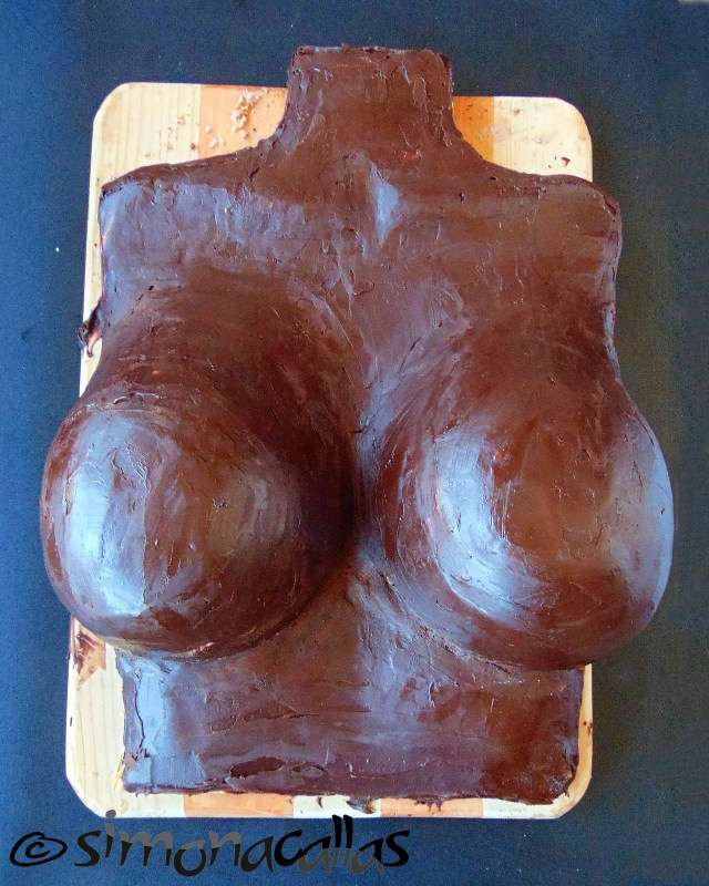 Tort-sexy-sani-bust-c