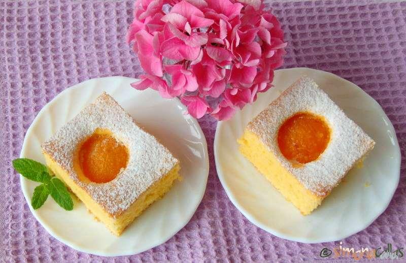 Fresh-Apricot-Cake-2