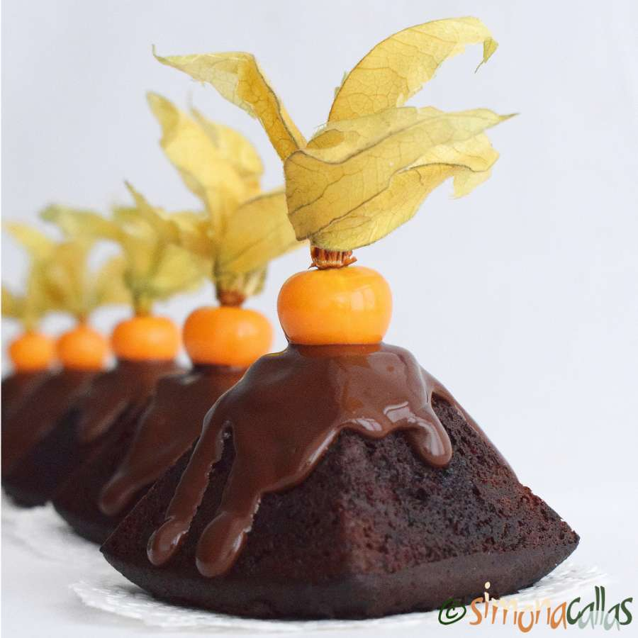 Chocolate Physalis Mini Cakes