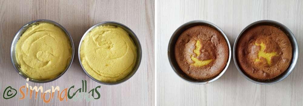 Blat de tort umed