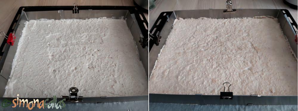Blat de bezea cu alune dacquoise