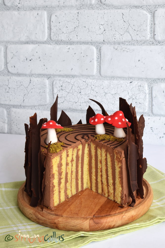 Tort spirala cu ciocolata